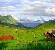 Ta Van, Lao Cai Province, Vietnam by Karl Willson