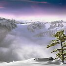 Whistler Frontiers