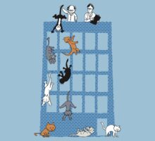Throwing cats scientifically-Anomalous Result by ressamac