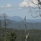A View From a Lookout on Road from Wallaman Falls - looking north by STHogan