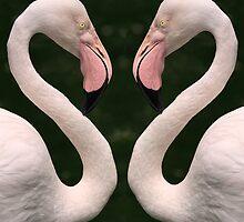 Love Birds by Carole-Anne