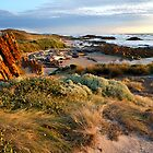 Edge of the World Beach - Arthur River, Tasmania by clickedbynic