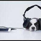 iPawd Music by Jennifer S.