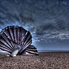 Scallop HDR by Steve Taylor