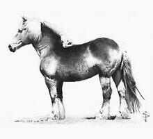 Belgian Draft Horse by Jan Szymczuk