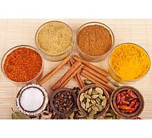 Spices and herbs Photographic Print