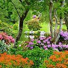 The Best Garden In NZ - Maple Glen - Southland by AndreaEL