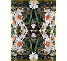 Hope - Card IV from The Tarot of Flowers Photographic Print