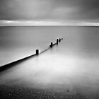 Dawlish Groynes by ThePingedHobbit