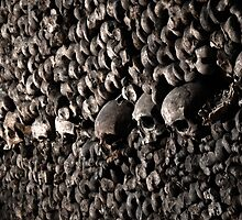 catacomb wall of bones by TheLostArt