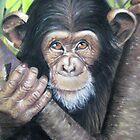 Chimp by Valerie Simms