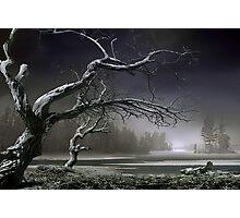 Winter Thaw Photographic Print