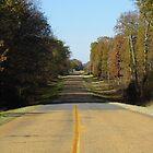 Highway 165 by WildestArt