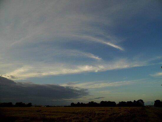 Wispy Clouds by WildestArt