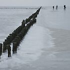 Frozen Wadden Sea by Lindie
