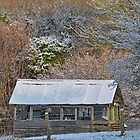 Old Garden Shed by relayer51