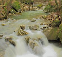 Sweet Indian Creeks Flowing Waters by David  Hughes