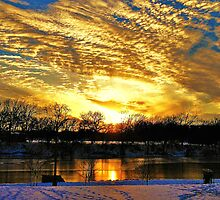 A Winter Portrait Along The Arkansas River by Vince Scaglione