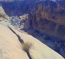 Rock erosion  by Irene  van Vuuren