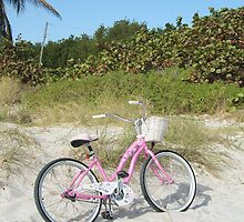 Beach Bike by Rosie Brown