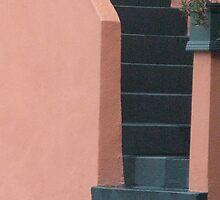 Coral Stairway, San Francisco by Jane Underwood