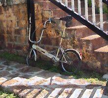 Folding Bicycle Antigua by Susan Savad