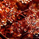 Spring Crystals by Felicia Moore