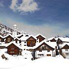 Bosco Guirin in snow by Michael Brewer