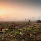 Fields of Yesterday by Michael Howard