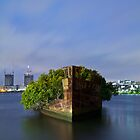 Homebush Bay Shipwreck - Portrait by Llewellyn Cass