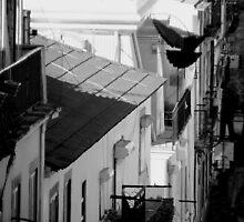 Streets of Lisbon by Afonso Azevedo Neves
