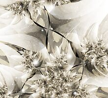 Ilex Aquifolium by heavenriver