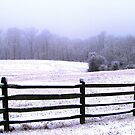 Winter Pastures, Gettysburg by AngieDavies