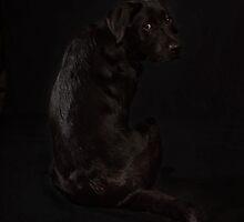 Black on Black by Mark Cooper