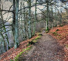 The Birks O' Aberfeldy by Tom Gomez