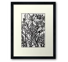 drawing of lillies Framed Print