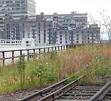 High Line, Abandoned Railyards Section, New York by lenspiro