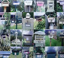 Mailboxes by Joan Wild