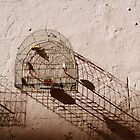 Old Havana Birdcage by Timothy State