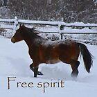 Free Spirit by Kelly  McAleer