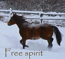 Free Spirit by Kelly  McAleer
