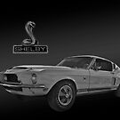 1968 Shelby Cobra GT500KR - King of the Road by Mike Capone