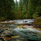 Sharps Creek by Charles & Patricia   Harkins ~ Picture Oregon