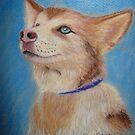 Malamute puppy by Hilary Robinson