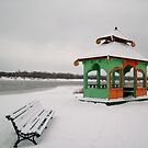 Gazebo on the bank icy river by Alla Melnichenko
