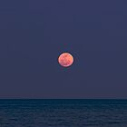 Moonrise, Nassau, Bahamas by Shane Pinder
