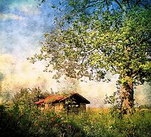 The Enchanted Hide-Away by Donnie Voelker