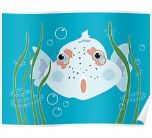 Funny Fish Poster