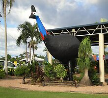 The Big Cassowary by STHogan