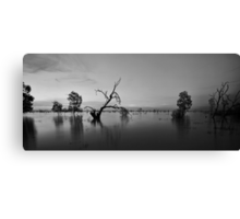 Menindee Devoid of Colour Canvas Print